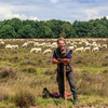 1 - Herder op de hei.jpg