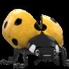 gemeente_ede_ladybug_geel_BIG.png